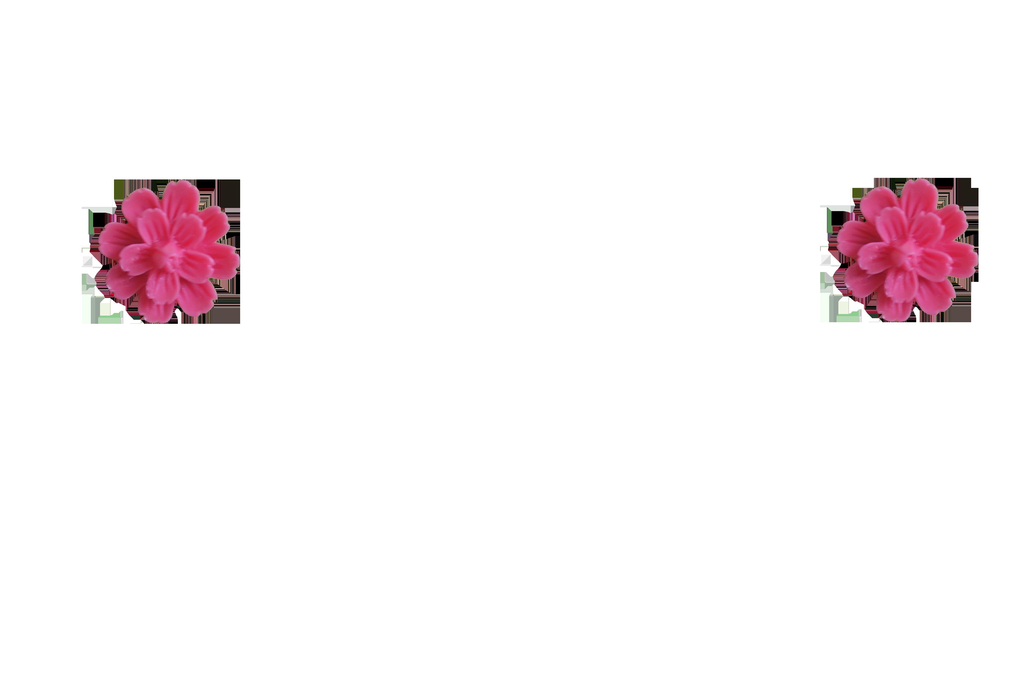 pivoine-fushia