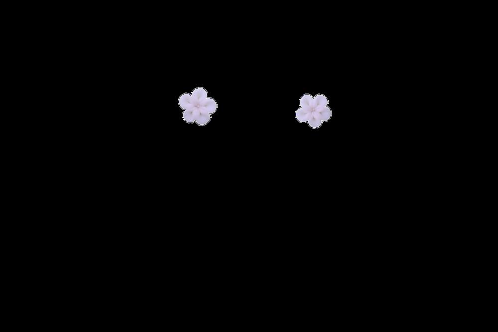 mini-rosasse
