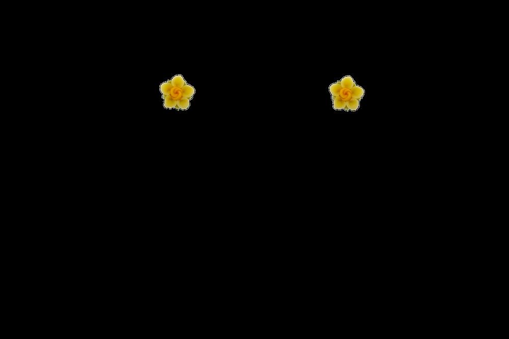 petite-fimo-papaye-jaune