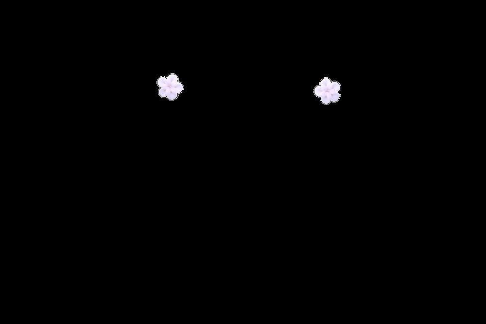 petite-fimo-rossase-blanc