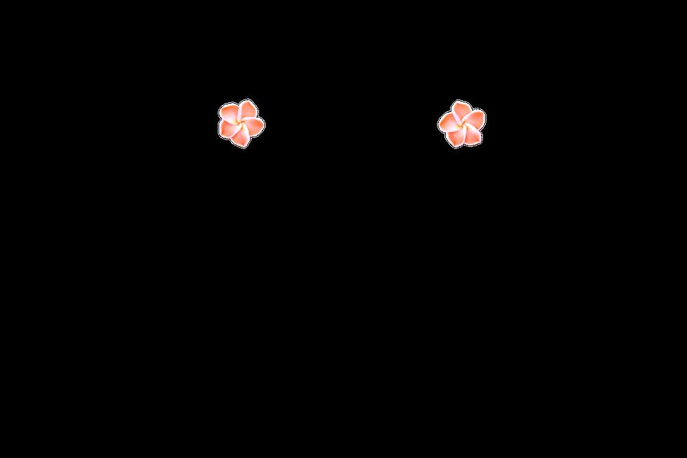 petite-fimo-tiare-orange